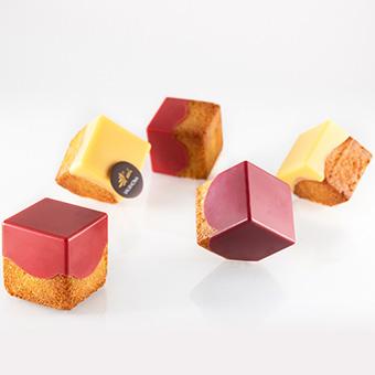 SUDO CAKE